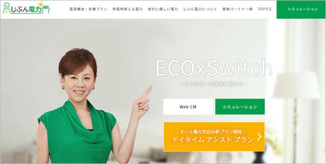 日本エコシステム 電力小売 新電...